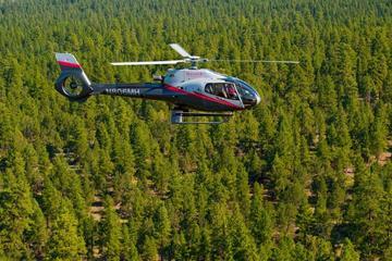 Helikoptervlucht van 45 minuten boven de Grand Canyon vanaf Tusayan ...