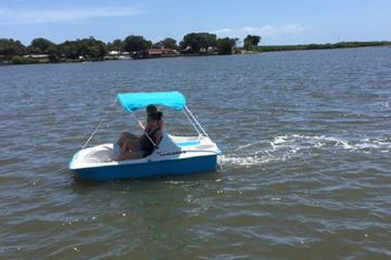1-Hour Dolphin Pedal Boat Rental in Daytona Beach