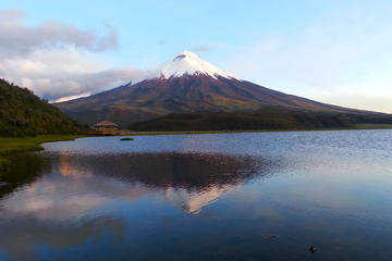 Cotopaxi Full-Day Tour from Quito Including Lunch