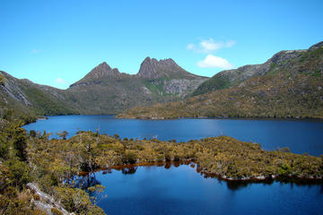 7 Day Private Tour of Tasmania from Hobart 8-11 Passengers