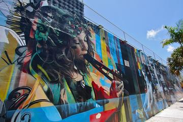 Best of Wynwood: Street Art and...