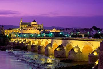 Cordoba Full Day Tour from Malaga