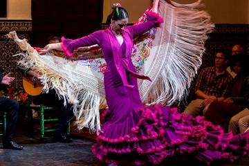 Seville Night  Sightseeing Tour and Flamenco Show