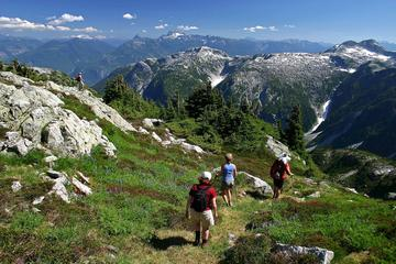 Whistler Small Group Wilderness Half-Day Hike