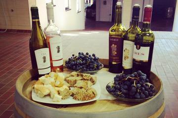 Plovdiv: Bulgarian Wine Tasting in Local Enoteca