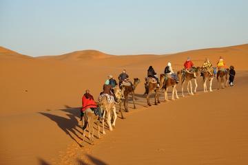 2-tägige Zagora-Wüstentour ab Marrakesch