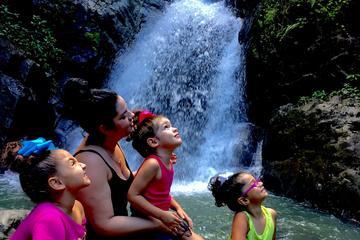 Excursión a la selva tropical El...