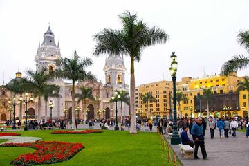 Special City Tour Lima and Barranco