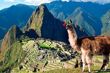Noche: Excursión al Valle Sagrado y Machu Picchu desde Cuzco