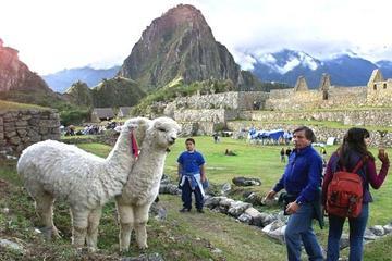 Tour por Perú de 15 días de duración desde Lima y visitando Paracas...