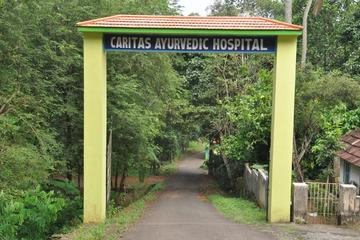 8-15 Days Holistic Ayurvedic Treatment in Kottayam