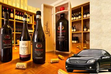 Private Amarone Wine Tasting Tour from Venice by Car