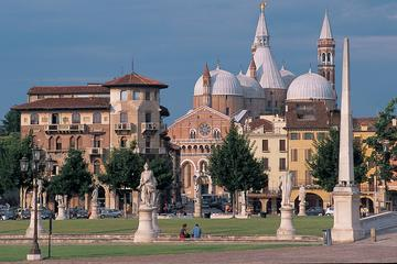 Private Half-Day Tour of Padua from Venice