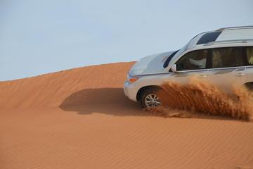 Aventure safari d'une demi-journée à Abou Dhabi