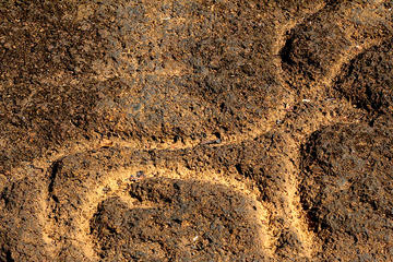 Archeologist led tour of ancient rock art, a laterite cave and a bubble lake- Day tour in Goa