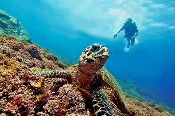 PADI Discover Scuba Diving at Gili Air