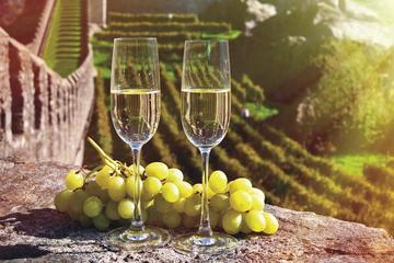 Besuch von Reims und Champagnerverkostung - Tagesausflug ab Paris