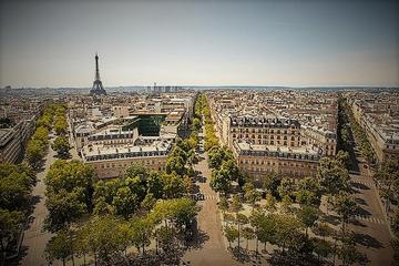 Paris City Tour: Segway, Eiffel Tower, Seine River Cruise, and Lunch in the Museum of Wine