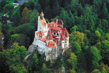 Tour privato a Peles e al castello di Dracula, gita di un giorno da