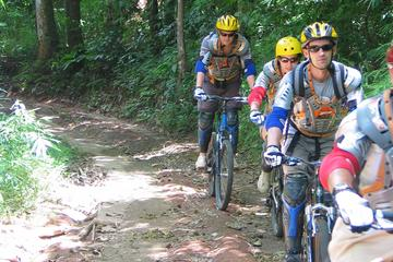 Full-Day Scenic XC Downhill Biking at...