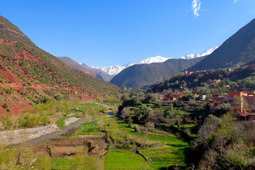 Tour privato di un giorno alle cascate della valle dell'Ourika da