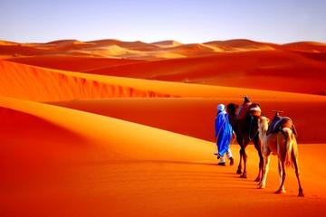 9-Night Morocco Discovery Private Tour from Marrakech