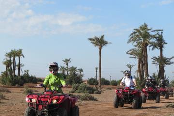 Excursion de 4heures à la Palmeraie au départ de Marrakech