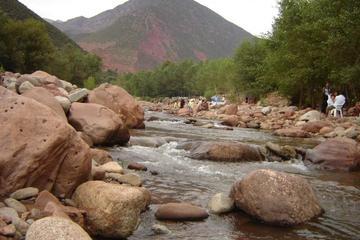 Privé dagtrip vanuit Marrakesh: Ourika-vallei, Berberhuis, waterval ...