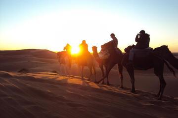 Visite privée de 3 jours dans le désert du Sahara et d'Atlas Chegaga...