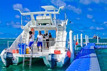 Catamaranexcursie vanuit Punta Cana met haaien en pijlstaartroggen