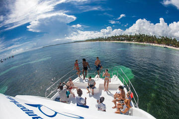 Paquete de catamarán y mundo marino...