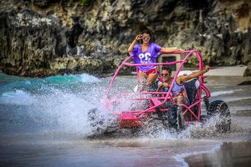 Punta Cana-Combo-Tour: Buggy-Abenteuer und Bootstour mit dem Katamaran
