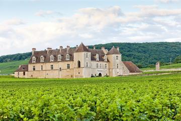 Circuit des vins en petit groupe dans la côte de Nuits de Bourgogne...