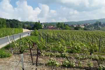 Small-Group Day Tour of Epernay: Picturesque Moet et Chandon and Hautvillers with Champagne Tasting from Reims