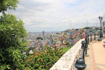 Guayaquil Half-Day City Tour...
