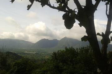 Excursión de un día al Valle de Antón y al Zoólogico El Níspero desde...