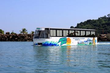 Recorrido por la ciudad en Aquabus en Isla Flamenco