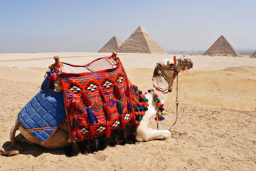 Private-Day tour to Giza Pyramids, Alabaster Mosque and Hanging...