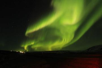 Northern Lights in Iceland as private oriented tour