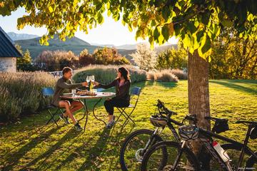 Full-Day Self-Guided Bike Tour of the Wineries