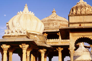 Half-day Museum Tour of Udaipur with Lunch