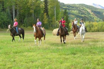 Bulkley Valley Horseback Ride