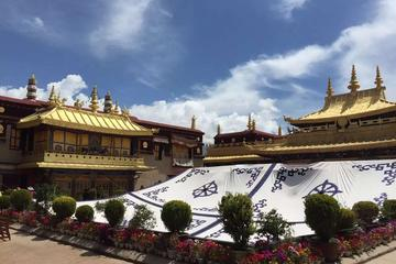 4-Day Central Tibet Monastery Tour to Lhasa, Gyantse, and Shigatse