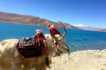 4-Night Lhasa and Lake Yamdrok...