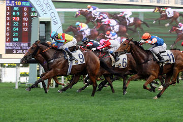 Chinese New Year Horse Racing Tour in...
