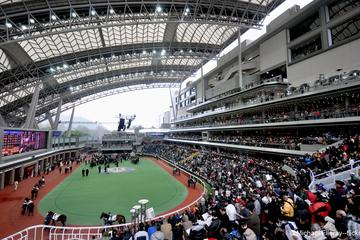 Hong Kong Horse Racing Tour