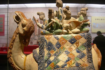 Xian Culture and History Overview One Day Private Tour