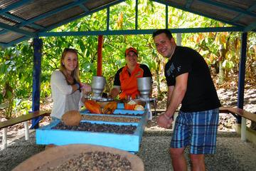 Aventura cultural Jungle Rally a partir de Punta Cana