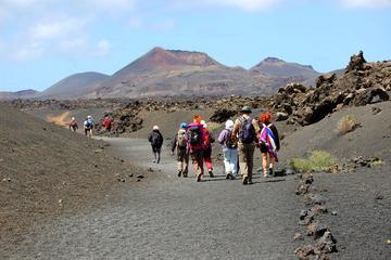 Excursão a pé guiada em 3 vulcões de Lanzarote