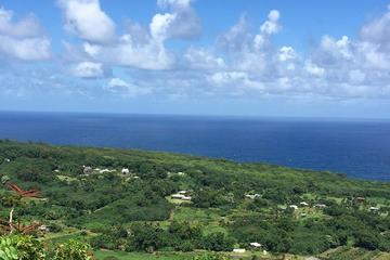 マウカ(山)とマカイ(海)を巡る、マウイ島エコアドベンチャーツアー